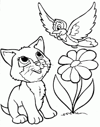 Cat Coloring Pages With Flower And Bird