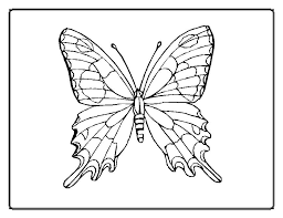 Epic Butterfly Color Pages 16 For Coloring Adults With