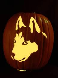 Wolf Pumpkin Carving Patterns Easy by Husky Pumpkin Halloween Pinterest Pumpkin Carving Pumpkin