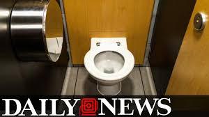toilet seat pranks bathroom trends 2017 2018