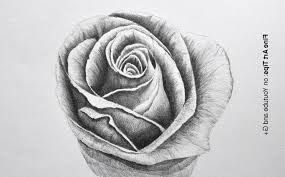 Romantic Pencil Sketch For Flower Sketching Flowers Drawing Art Ideas