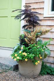 40 Small Garden Ideas - Small Garden Designs Modern Garden Plants Uk Archives Modern Garden 51 Front Yard And Backyard Landscaping Ideas Designs Best 25 Vegetable Gardens Ideas On Pinterest Vegetable Stunning Way To Add Tropical Colors Your Outdoor Landscaping Raised Beds In Phoenix Arizona Youtube Kids Gardening Tips Projects At Home Side Yard 55 Youll Fall Love With 40 Small 821 Best Images Plants My Backyard Outdoor Fniture Design How Grow A Lot Of Food 9 Ez Tips