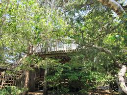 100 Fire Island Fair Harbor Treetop Oasis In The Heart Of
