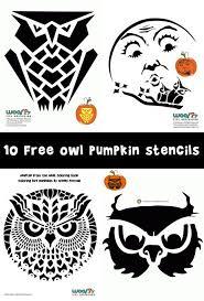 Owl Pumpkin Template by Owl Pumpkin Carving Stencils Woo Jr Kids Activities