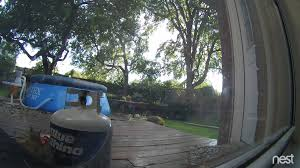 Nest Security Camera Caught Backyard Vandal - YouTube Amazoncom Cloud Mountain 7 Piece Patio Pe Rattan Wicker I Saved Some Kids From Hurting Themselves In My Backyard Outdoor Cctv Camera Infrared Surveillance Dad Sets Up Security Captures Rare Black Coyotewolf Mailbox Takedown At House On Security Camera Youtube New 5 Megapixel Backyard With 8aa Batteries The Operating On Roofing House Bird Vs Netgear Arlo Pro Wireless System Review Easy Cameras For Business West Palm Beach Agent Nest Shares Videos Of Crazy Scenes Caught By Its Home Bbg Services