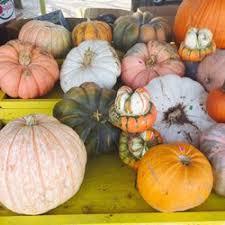 Pumpkin Patch Sf Yelp by Sally U0027s Pumpkin Patch Farmers Market 967 W Princeton Dr