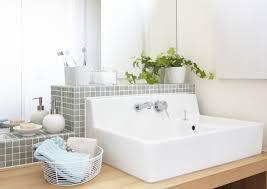 pflanzen fürs badezimmer mit und ohne fenster