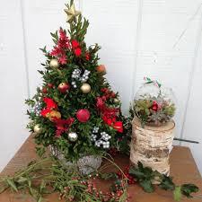 Christmas Tree Shop Shrewsbury Ma by Sweetbriar Florist U0026 Perennials Build Your Own Boxwood