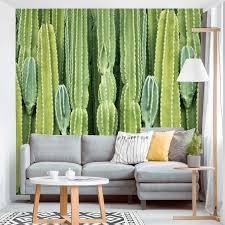 fototapete kaktus wand