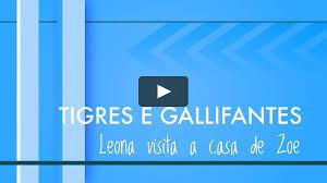 100 Casa Leona Visita A Zoe On Vimeo