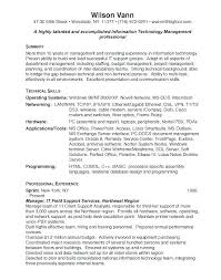 Information Technology Resume Examples Curriculum Vitae 421