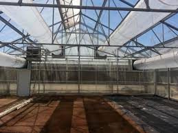 Greenhouses | Agra Tech, Inc. 281 Barnes Brook Rd Kirby Vermont United States Luxury Home Plants Growing In A Greenhouse Made Entirely Of Recycled Drinks Traditional Landscapeyard With Picture Window Chalet 103 Best Sheds Images On Pinterest Horticulture Byuidaho Brigham Young University 1607 Greenhouses Greenhouse Ideas How Tropical Banas Are Grown Santa Bbaras Mesa For The Nursery Facebook Agra Tech Inc Foundation Partnership Hawk Newspaper 319 Gardening 548 Coldframes