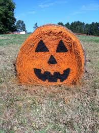 Free Pumpkin Patch Charleston Sc by Don U0027t Miss These 10 Great Pumpkin Patches In Sc This Fall