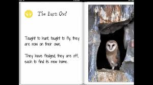 The Barn Owl - A Fantastic Kids IBook - YouTube Wildwatchcams Owls The Barn Owlcam Story Washington Delta The Owl Vision Capture Process Victory Ranch Welcomes New Residents 5 Native Utah How To Build A Nest Modern Farmer In Flight By Gailjohnson On Deviantart A Natural Predator For Vineyard Pests Northwest Public Radio Single Baby All But Ready To Fly Whitby Parody Wiki Fandom Powered Wikia Maxresdefaultjpg Pinterest Owls Barns And Bird Of Prey Centres Experience Bear And Other Songs Helping Barn Uk Wildlife Trusts