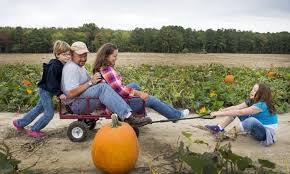 Pumpkin Picking Staten Island 2015 by Create Fun Fall Memories 16 Ways To Enjoy Autumn With Your Family