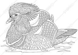 Adult Coloring Pages Mandarin Duck Zentangle Doodle For Adults Digital Illustration Instant Download Print