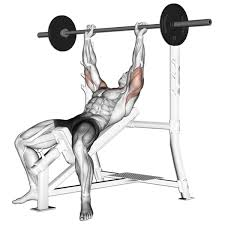 Incline Bench Press Exercises Workouts Sams Fitness