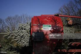 Christmas Tree Baler by Gallery Of Christmas Tree Balers Catchy Homes Interior Design Ideas
