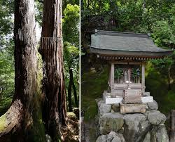 100 What Is Zen Design Design Minimal Design Less Is More Japanese Traditional