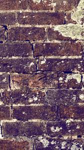 Brick Wall Grunge Texture iPhone 5 Wallpaper HD Free Download