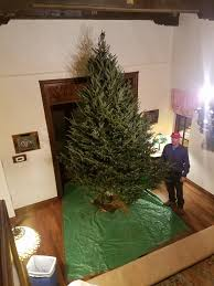 Longest Lasting Christmas Tree by Tebo Evergreen Home Facebook