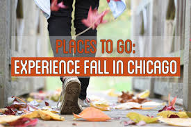 Bengtson Pumpkin Farm Chicago by Places To Go Experience Fall In Chicago Chicago Food Planet