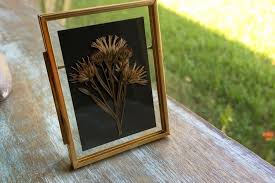 Framed Pressed Flower Workshop - My Enlighten Class 20 Off Eco Tan Coupons Promo Discount Codes Wethriftcom About Smith Floral Greenhouses Reviews Hours Delivery Flower Delivery Services In Melbourne Maddocks Farm Organics Buy Edible Flowers Online Poppy Botanical Chart Wall Haing Print With Wood Poster Hangers Pull Down Reproduction Solid Brass Hdware Ecofriendly Art Cratejoy Coupons Best Subscription Box Coupon Codes Apple Student 2019 Airpods Flirt4free Coupon Gaia Plants And Gifts Dtown Las Vegas 6 Last Minute Sites For Mothers Day With Redbus Offers Upto 550 Off Bus Promo Code Sep Shop Petal By Pedal Rosa Cadaqus Your Dried Flower Shop Europe