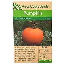 Bigs Pumpkin Seeds Nutrition by Wc Pumpkin Littleoctober Front Jpg