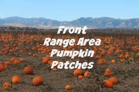 Chatfield Pumpkin Patch Hours by Denver Area Pumpkin Patches