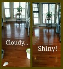 Best Dust Mop For Hardwood Floors by Cloudy Hardwood Floors Best Friend 1 2 Cup Ammonia 1gallon Water
