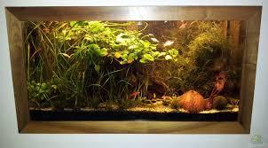 aquarium zwanni 8246 becken in zimmerwand