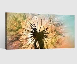 leinwandbild 1tlg pusteblume blume schirmchen himmel löwenzahn leinwand bilder wandbild leinwandbilder wohnzimmer gerahmt 9cb694 wandtattoos und