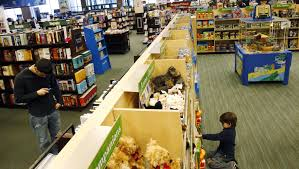 Barnes & Noble (BKS) Is Closing Its Co-Op City Location, Which ... Barnes Noble On Fifth Avenue In New York I Can Easily Spend The Jade Sphinx We Visit Planted My Selfpublished Book Nobles Shelves And Rutgers To Open Bookstore Dtown Newark Wsj 25 Best Memes About Bookstores 375 Western Blvd Jacksonville Nc Restaurant Serves 26 Entrees Eater Books Beer Brisket As Reopens The Galleria Jaime Carey Leaving Dancers Among Us Is Featured Today By One Day Monroe College Opens With Starbucks Gears Up For Battle With Amazon Barrons