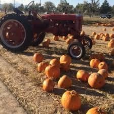 Pumpkin Patch Utah South Jordan by Schmidt U0027s Farm U0026 Greenhouses Farmers Market 9120 S Redwood Rd