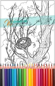 Bird Nest Trees Tree Birds Coloring For By WhimsicalPublishing