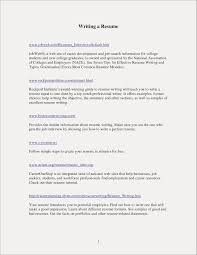 Service Advisor Resume Awesome 20 No Work Experience Template Career Example