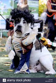 Tompkins Square Park Halloween Dog Parade 2016 by New York Park Goes To The Dogs For 25th Halloween Dog Parade The