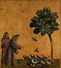 st francis of assisi blessing of animals st francis prayer for