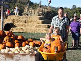 Pumpkin Patch Medford Oregon 2015 by Fort Vannoy Corn Maze And Pumpkin Patch