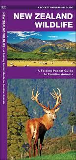 New Zealand Wildlife A Folding Pocket Guide To Familiar Animals Naturalist James Kavanagh Waterford Press Raymond Leung 9781583558904