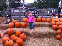 Irvine Pumpkin Patch Tanaka by The Brighter Writer Cutest Kid In The Patch