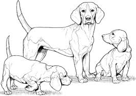 Beagle With Puppies Coloring Page