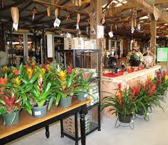 Italian Tile Imports Ocala Florida by Your Destination For A Unique Garden In Fl Pottery Express