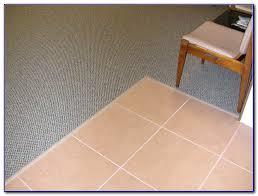Carpet To Tile Transition Strip On Concrete by Carpet To Tile Transition Strip On Concrete Carpet Vidalondon