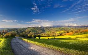 Country Road And Beautiful Summer Landscape