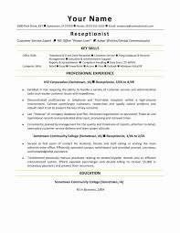 Project Management Consultant Resume Example Of Entry Level Consulting Resumes