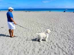Is Bathtub Beach In Stuart Fl Open by Stuart Sv Seas The Day