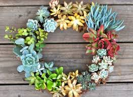 Garden Trend We Love Make Living Wall Art With Succulents