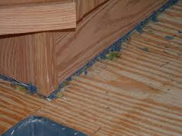 Installing Laminate Floors On Walls by Installing Laminate Flooring In Mobile Homes