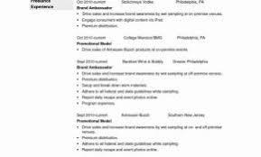 Resume Template Temple University Elegant For Cashier Or Cv Model Simple